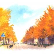 日本大通り銀杏並木